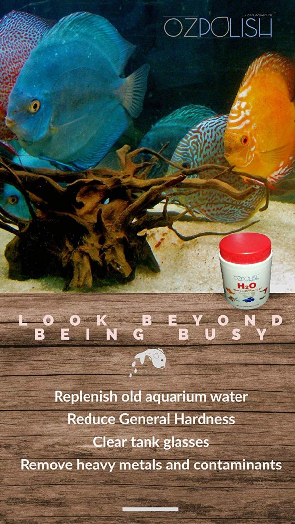 OZPOLISH H2O